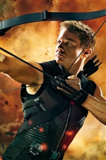 Hawkeye dans The Avengers iPhone fonds d'écran