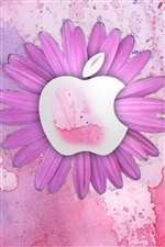 Fleur rose d'Apple iPhone fonds d'écran